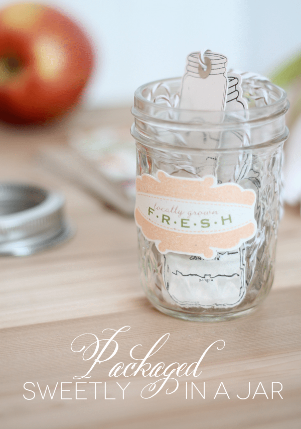 Mason Jar Tags Packaged
