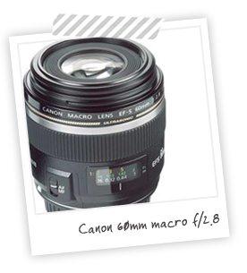 Equipment I Use: Canon 60mm Macro | Damask Love Blog