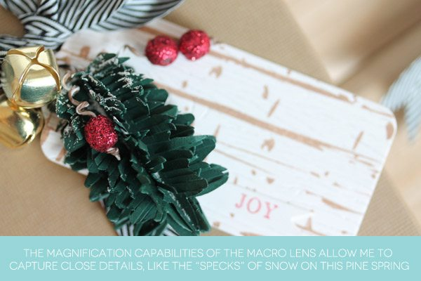 How I use my Macro Lens | Damask Love Blog