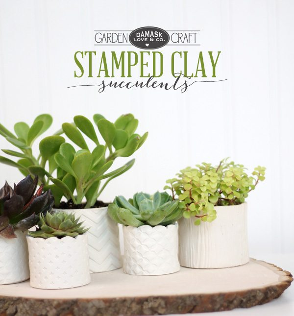 DIY Stamped Clay Succulent Pots | Damask Love Blog