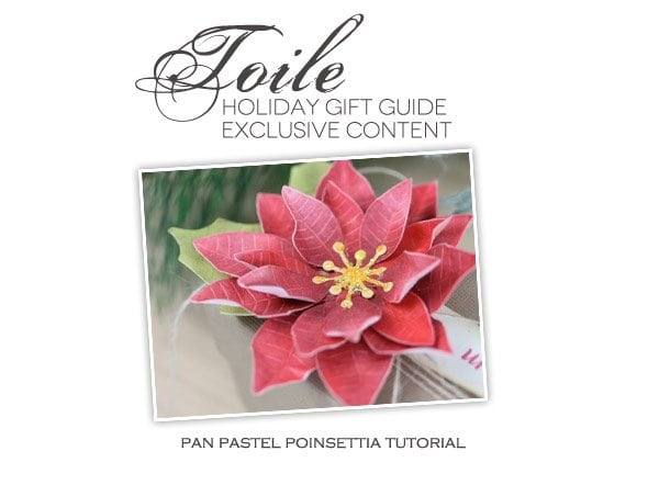 Toile Gift Guide: PanPastel Poinsettia Tutorial | Damask Love Blog