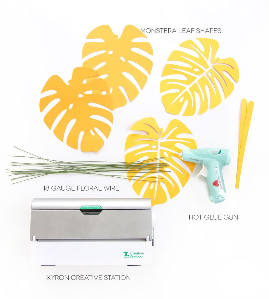 Autumn leaves are coming but I'm still holding on to summer. Combine both seasons with these DIY Paper Monstera Leaves made with a Cricut Explore