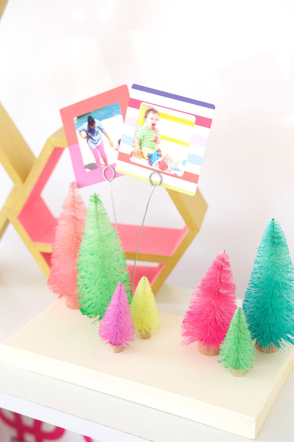 DIY Bottle Brush Tree Photo Display | damask love