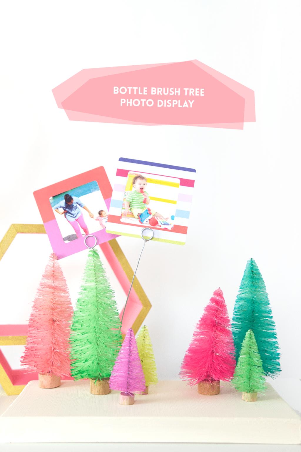 DIY Bottle Brush Tree Photo Display | damask love