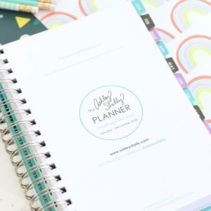 Ashley Shelly Planner Review | damask love